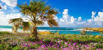Cyprus: Picture-perfect Paphos region