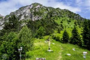 Hiking-in-Italy-Mt-Chiampon | FinnsAway