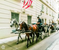 Picture greetings from Vienna, the charming capital of Austria! Sightseeing in and around the inner city during our short visit to this historical city. | FinnsAway Travel Blog