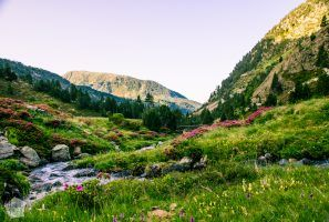 Sorteny Valley Nature Park | Introducing mountainous Andorra, a microstate between France and Spain | FinnsAway Nomad Travels