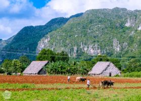 Rural Viñales, Cuba, offers great possibilities for hiking and other outdoor activities | FinnsAway Travel Blog