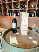 Tasting wine in Blaye Citadel | FinnsAway Travel Blog