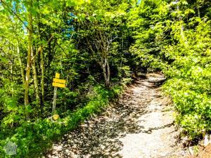 Chamechaude Alps France Hiking FinnsAway Road Trip 2019-2