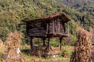 Machakhela national park batumi georgia finnsaway 2018-03
