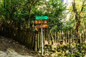 Machakhela national park batumi georgia finnsaway 2018-04
