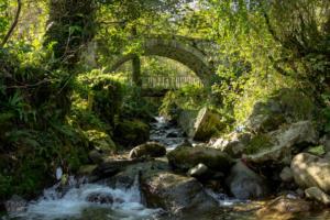 Machakhela national park batumi georgia finnsaway 2018-07