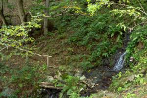Machakhela national park batumi georgia finnsaway 2018-19