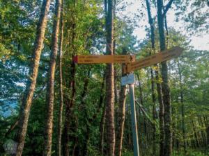 Machakhela national park batumi georgia finnsaway 2018-24