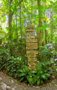 D&D Brewery in Los Naranjos | Lago de Yojoa Lake, Honduras | FinnsAway Travel Blog