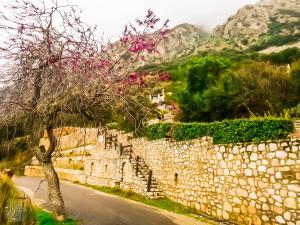 Paralia Vergas | Traveling in Peloponnese