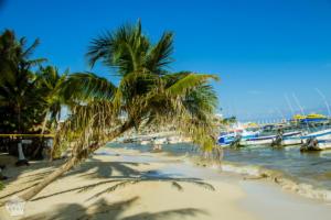 Mexico, Yucatan Peninsula, Riviera Maya: Visiting Playa del Carmen in October | FinnsAway Travel Blog